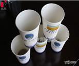 隐茶杯OEM产品系列